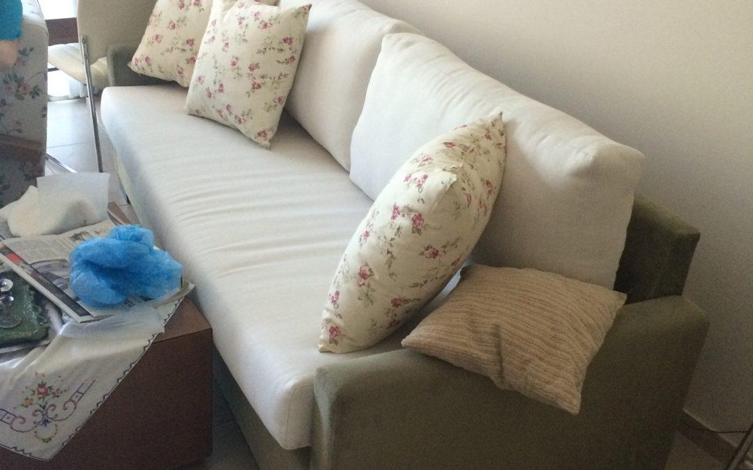 Sofa and Cusions